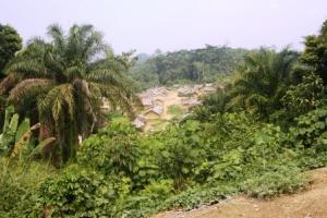 Ibanga the capital of Bakondjo